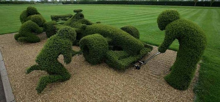 Our Top Tips on Keeping your Hedges looking Great