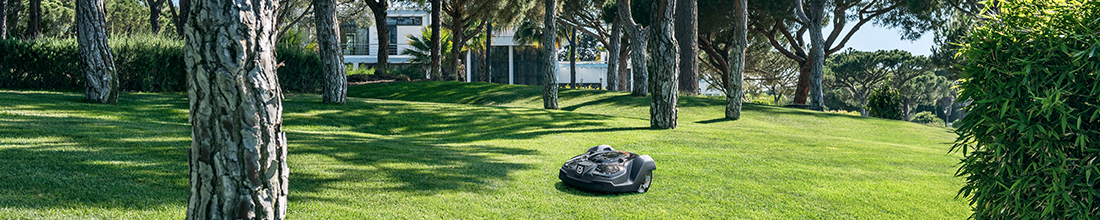 automower in large garden with trees