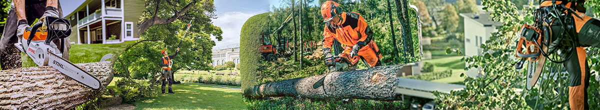 Chainsaw & Forestry Equipment | Robert Kee Power Equipment