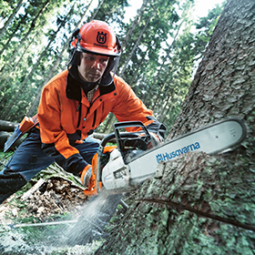Professional & Forestry