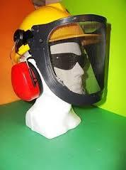 Proshield Face Guard with Earmuffs